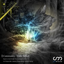 "Community"""